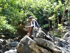 Sharavathy Valley 174