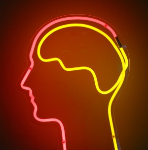 Accelerated Learning by Temporary Changes to the Brain