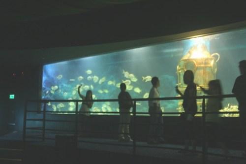 Manila Ocean Park 009