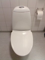 >Dual Flush Toilets- They are a Big Deal (2/2)