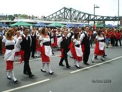 Parade der Kulturen Ffm 2008 (01)