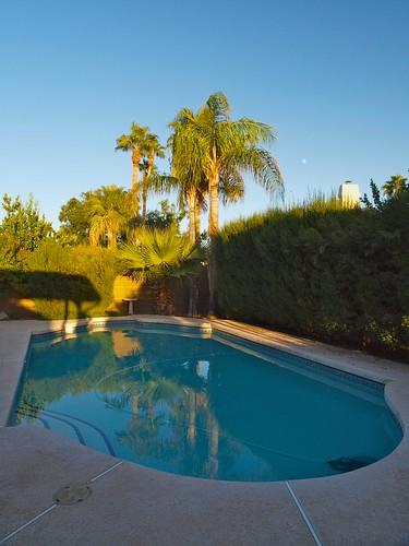 Pool in Phoenix