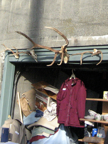 Garage sale antlers