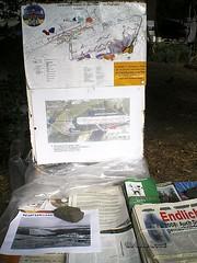Waldbesetzung Kelsterbach Juni 2008 (06)