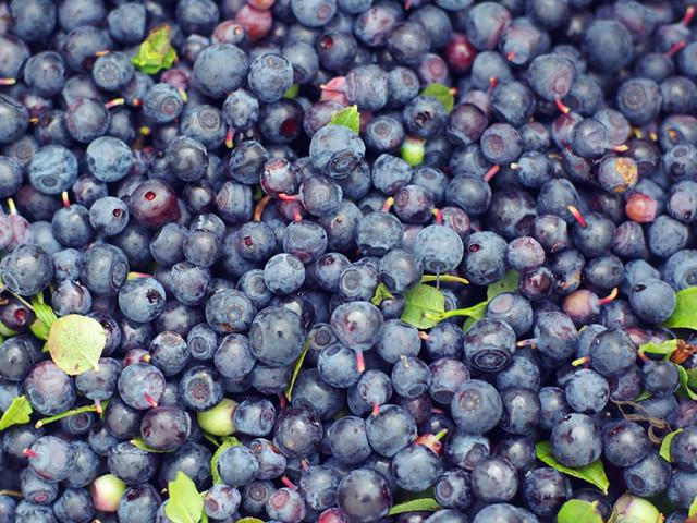 I love fresh blueberries
