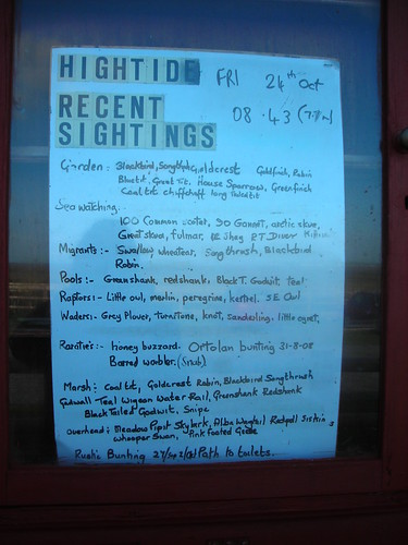 Sightings at the bird reserve