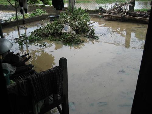 My grandparent's usually pristine backyard.