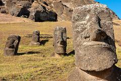 Moai's
