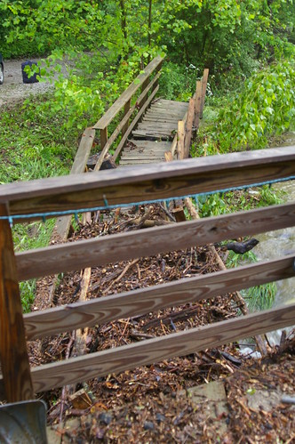 Bridge devestation 2