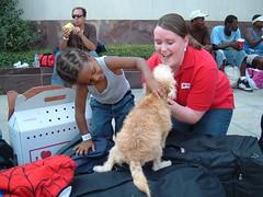 Hurricane Gustav- New Orleans, LA 9.5.2008