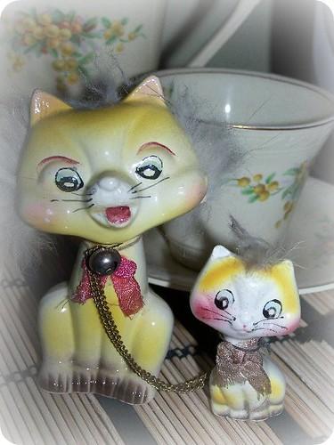 china kittehs