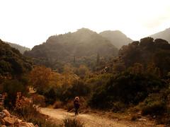 """2η Εκδρομή: Εκδρομή Εξερεύνησης : Περπάτημα από τη Δάφνη στον Κάμπο """"Η διαδρομή ξεκίνησε από το όμορφο χωριό «Δάφνη» στους πρόποδες του Κοσκινά, όπου και το ομώνυμο βυζαντινό κάστρο. Η πρόκληση ήταν να βρούμε ένα μονοπάτι για να βγούμε στον Κάμπο, τη μοναδική πεδινή κοιλάδα της Ικαρίας όπου ήταν ο κυριότερος οικισμός του νησιού στους αρχαίους και μεσαιωνικούς χρόνους."""