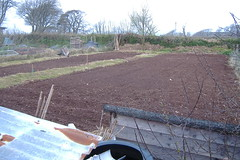 080420-allotment424