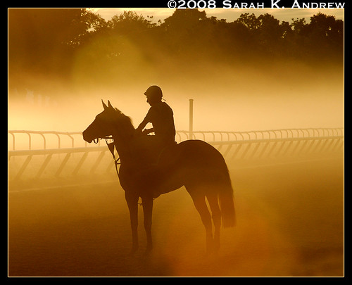 Horse and Rider at Dawn