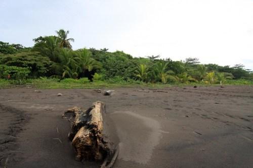 Costa Rica - Día 2 (109)