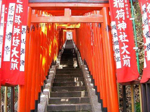 Hie-jinja. Tunel de torii.