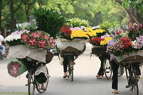 Hà Nội by My Lucky Stars.