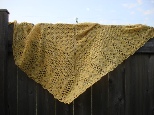 Bee Fields Shawl 4