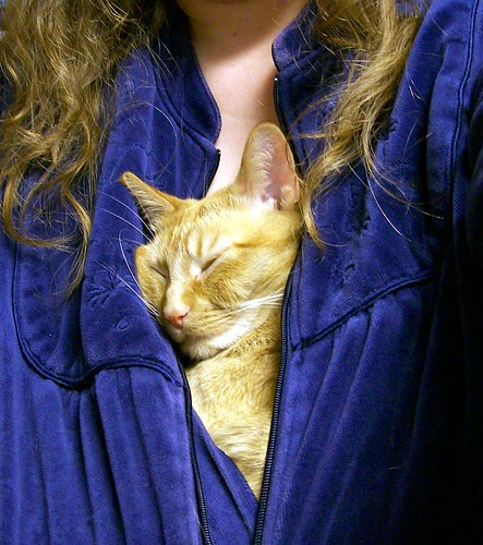 Buttercup in Robe 3