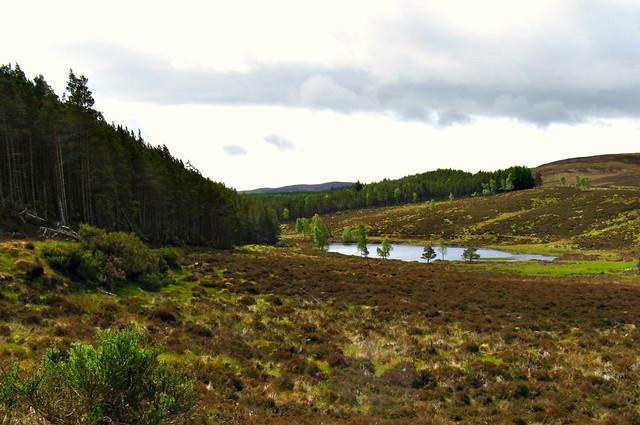 Loch a Bhron, Boblainy