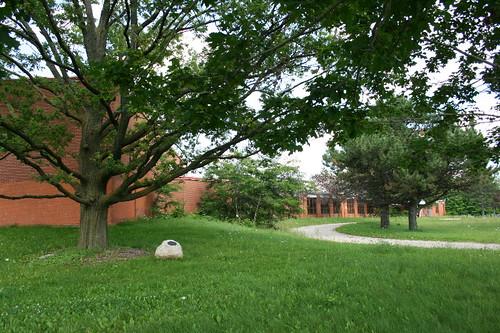 Royal Oak at Speyside School