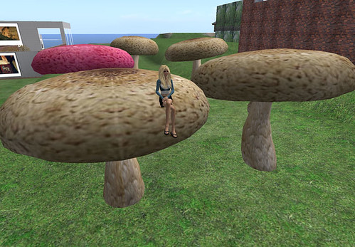 Mainland - Mushrooms