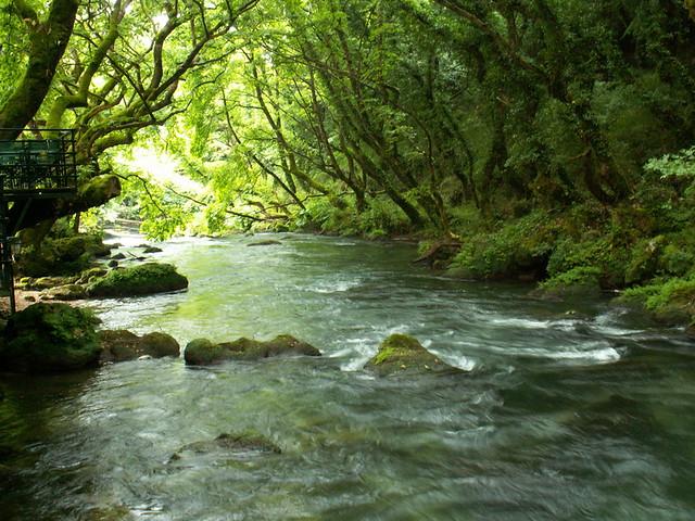 Όμορφος κόσμος, μαγικός: Το Θεογέφυρο στον ποταμό Καλαμά