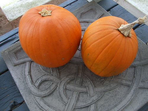 My 2 pumpkins