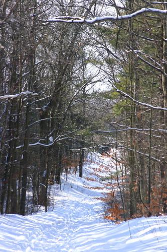 Deep snow on hiking trail