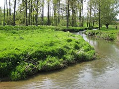 Geul valley (South Limburg, Netherlands 2008)