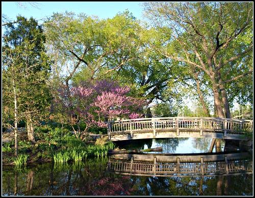 Reflection under the Lussier Bridge