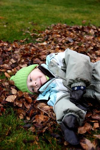 Enjoying the fall