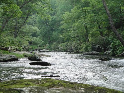 Gunpowder River In Late May