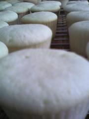tiny cupcakes