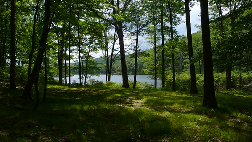L1010772 - Turkey Lake / Harriman State Park NY
