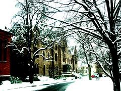 Seaton Hall University, New Jersey