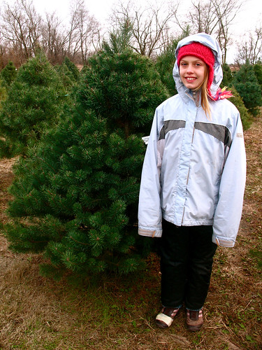 tree farm-n's fave by you.