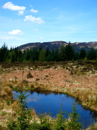 The Blue Lochan