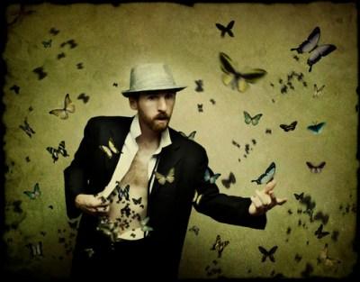 August 13th 2008 - Butterflies by Stephen Poff.