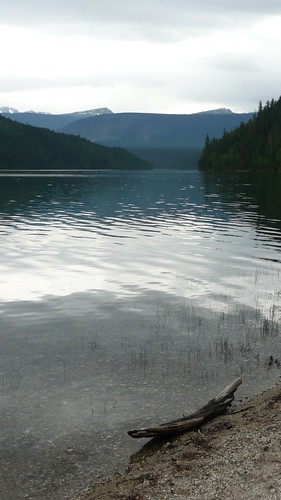 Wells Gray 052 by you.