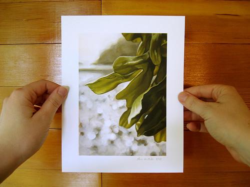 Seaweed.