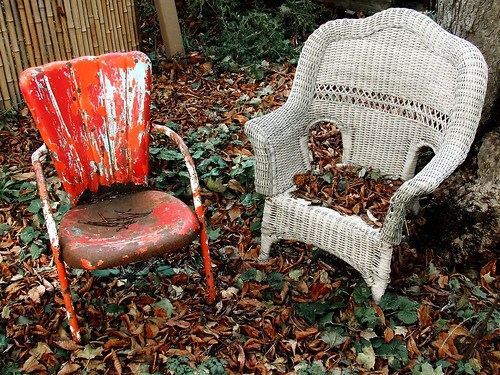 autumn chairs