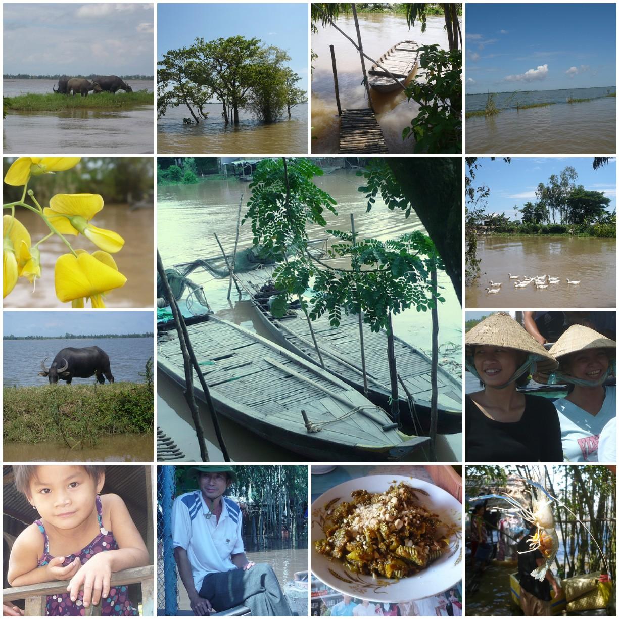 Tam Nông _ Đồng Tháp 9/08