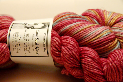 A swell yarn shop duet sock yarn