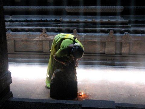 whispered wishes...madurai meenakshi temple 260308