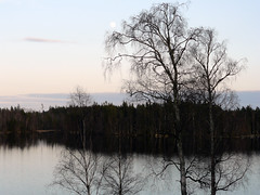 Spring weekend at Kongagården