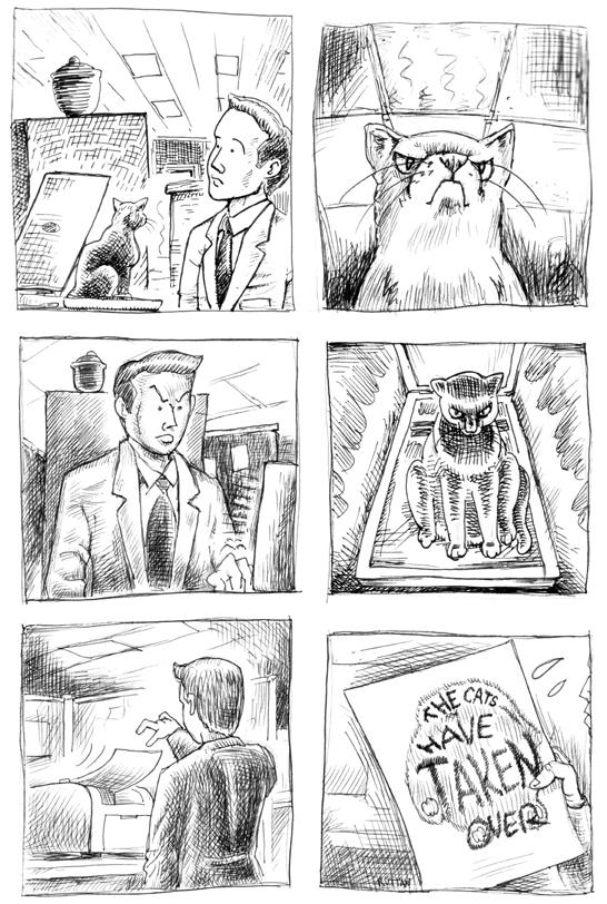 cat-scan-strip