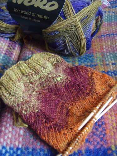 Jaywalker noro sock