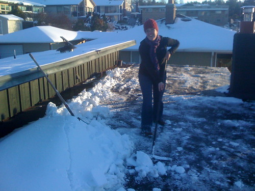 Oh. Hai. I'm just SHOVELING OUR ROOF.
