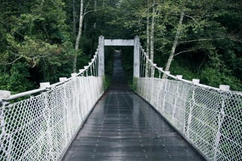 06.07 / 06:47 / 武陵吊橋